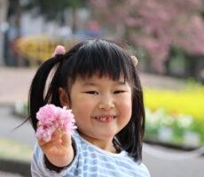 作品No:19 お花がいっぱい母の日だったので、ひらひら舞ってるきれいな桜を集めては、プレゼント!って持ってきてくれました(*^^*)