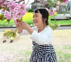 作品No:21 桜とわたし垂れ下がる桜を間近に見て、満面の笑み!! わたしと桜、どっちが可愛い??