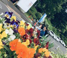 作品No:42 花<br><br>いつも花がたくさんある桂公園は、私の映えスポットです♡<br><br>