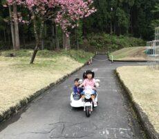 作品No:53 姉弟でドライブ<br><br>娘(姉)が運転する助手席に息子(弟)が乗って、桜の木の下のコースをドライブ♪<br><br>