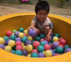 作品No:98 まま、どーぞ<br><br>土管の中が気に入り何度も入ってました!はい、どーぞとボールを渡され可愛かったです。<br><br>