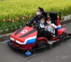 作品No:112 お花見ドライブ<br><br>公園には菜の花・チューリップ・八重桜がキレイに咲いていて、春を満喫しました。<br><br>
