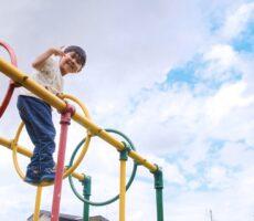 作品No:122 上まで登ってピース<br><br>恐る恐る登って、上の方まで登れて嬉しそうな表情☺︎(若干へっぴり腰。笑)<br><br>