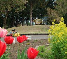 作品No:131 内緒話し♡<br><br>兄弟でこっそり内緒話し。桂公園には沢山のお花が季節ごとに咲いています。お花も子供の成長を見守っているようです♡<br><br>
