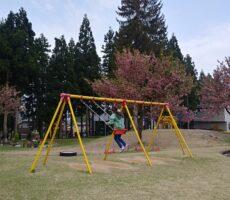 作品No:156 私だけの公園<br><br>朝早い時間、まだ誰もいない公園でブランコ乗り放題。<br><br>