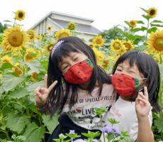 作品No:52 ひまわり+スイカ=夏‼️<br><br>この日は向日葵を見たくて桂公園に行きました🌻お揃いのスイカマスクで、夏を感じる写真になりました🍉<br><br>