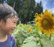 作品No:68 笑顔のひまわり<br><br>天気の良い日に綺麗に咲いていた向日葵と撮りました。向日葵のような明るく元気な笑顔がポイントです。<br><br>