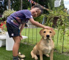 作品No:74 犬かわいいね♡<br><br>犬がいるよー!と大喜びでした。<br /> 犬が可愛くて頭をなでなでしている写真が撮れました。<br><br>