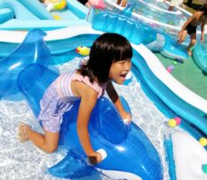 作品No:147 イルカに乗った少女<br><br>たまにひっくり返ります。<br><br>