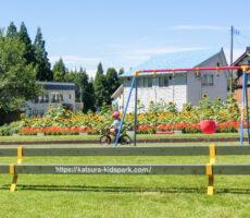 作品No:149 こげるようになりたいな<br><br>きれいなひまわり畑の他に桂公園の名前が入ったベンチも一緒に撮影したことで、一目で桂公園って分かる写真です。<br><br>