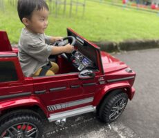 作品No:245 ドライブGoGo!<br><br>1歳9ヶ月、初めて一人で(?)ドライブ!ドヤ顔のぼく。<br><br>