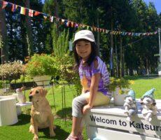 作品No:246 お気に入りスポット<br><br>花と動物が大好きな娘はここの花壇がお気に入りです。<br><br>