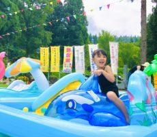 <strong>作品No:109 公園でプールなんて最高だね‼︎</strong><br><br>公園でプールに入れるところなんて、桂公園さんくらいです💛<br /> プールに遊具にゴーカートにしゃぼん玉にひまわり🌻に。。。<br /> まさに、子供たちにとっての夢の国です✨