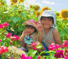 <strong>作品No:98 お花がいーっぱい!!</strong><br><br>遊びに来たらお花がたくさん咲いてたよ^_^<br /> とっても可愛かったー!!