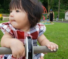 <strong>作品No:81 ひとりでのれたよ</strong><br><br>生後7ヶ月、初めての遊具。<br /> 支えなしで乗れた1枚!<br /> この公園でいっぱい遊んで大きくなってね!