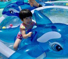 <strong>作品No:111 初イルカ!</strong><br><br>あっちぃ日は桂公園のプール<br /> イルカ初乗りでニコニコ<br /> ごきげんな一日でした
