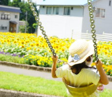 <strong>作品No:52 高くこげるようになったよ♡</strong><br><br>子どもが自分でやっとブランコをこげるようになりました!!その目線の先に見える向日葵畑を見て一言『綺麗ーーー!!』と♡今まで見えなかった世界が見えた瞬間をカメラに納めました。