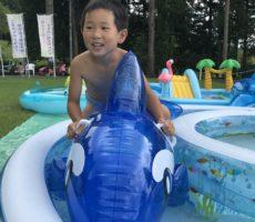 <strong>作品No:68 イルカにのって〜G O</strong><br><br>大きなイルカを見てびっくり。円形のプールでぐるぐる回ってました。