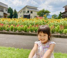 <strong>作品No:90 夏♡楽シーソー!</strong><br><br>シーソーで、ニコニコsmileになってるところをパシャり!青空、向日葵、草木の緑がとても素敵な桂公園!また遊びに行きます♡