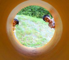 <strong>作品No:61 ひょっこりはん🎵</strong><br><br>子どもたちが「みてー🎶」と楽しそうにひょっこり出てくるところを撮りました!